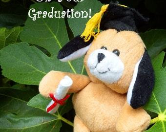 Graduation card, bear, custom color, personalize name, custom date, custom school