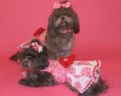 VALENTINE:  Heart of Flowers Dog Dress