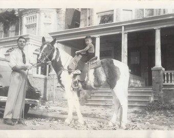 Pinto on the Row - Vintage 1930s Velox Man, Son and Horse Photograph
