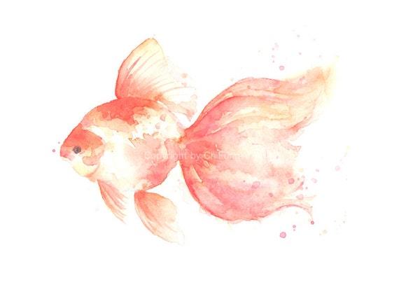 Fish, fish print, giclee, giclee fine art print, watercolor print, watercolor, Goldfish, original art, Original watercolor print