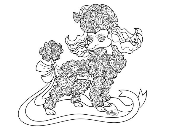 poodle dog coloring pages | Cute Frilly Toy Poodle Adult Coloring Page Digital Stamp