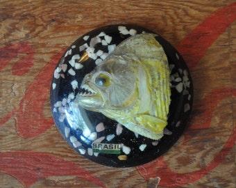 Vintage Piranha Head in Lucite