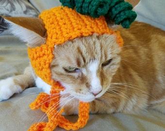 Pumpkin Cat Hat-Cat Hats- Hats for Cats- Pumpkin Cat- Halloween Cat- Costumes for Cats- Clothes for Cats