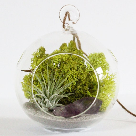 Hanging Terrarium Kit Air Plant and Amethyst Crystal Points with Gray Sand || Serenity || Relax || Zen Garden
