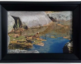 Framed Art Photograph - Earth & Water Collection - Framed Print - Rocks In Water 1