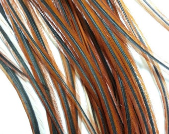 5 long rooster feathers, natural brown feather, rooster saddle, hair extension, craft supply, fly fishing feather