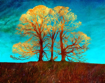 Rusty trees  - Signed limited edition print