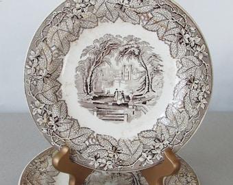 Antique Transferware Ironstone Plate, Ashworth Bros Vista Brown Plates (2) | Masons Vista, brown transferware decorative plates, wall plate