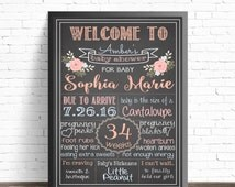 Gender Neutral Baby Shower Chalkboard Sign / Shabby Chic / Floral Shower Decorations / Boy or Girl / Blue and Pink Flowers / Nursery Decor