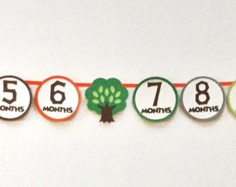 First Year Photo Bannner - 12 Month Photo Banner - Woodland Party - Woodland Photo Banner - Monthly Photo Banner - First Birthday Banner