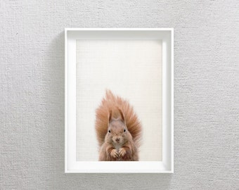 Squirrel Print, Squirrel Art, Squirrel Decor, Squirrel Printable, Squirrel Artwork, Squirrel Art Print, Squirrel Photo, Squirrel Photography