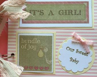 Baby girl scrapbook premade scrapbook album  baby girl gift   baby girl album