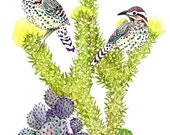 Cactus Wren No.1, Archival Print of Original Watercolor, you choose size