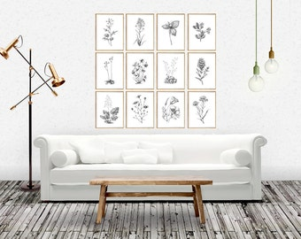 Botanical print, botanical art, botanical print set, botanical chart, black and white botanical, scandinavian design, scandinavian print set