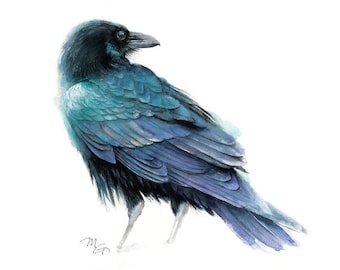 Raven watercolor painting - Archival print. Nature or Bird Illustration, Crow, Raven