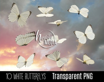 10 Transparent PNG Beautiful White Butterfly Fairytale Wings - Photoshop Photo Overlay Prop for Photographers - Instant Download