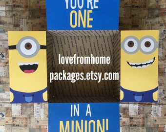 Minion Care Package Flaps