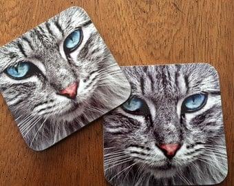 Kitty Cat Hardboard Coasters (Set of 4)