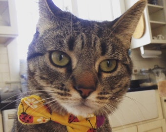 Bow Ties For Cats