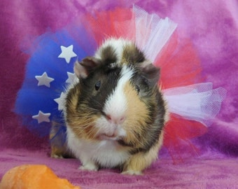 American Flag Tutu for Small Pets