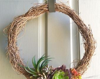 Succulent Wreath, Living 12 inch
