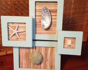 Seashell collage: group of four