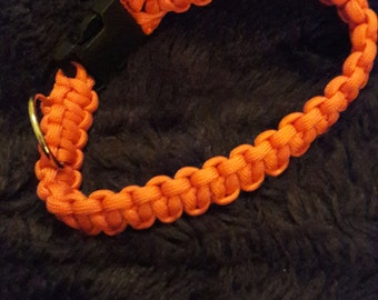 Bright orange 11in long paracord dog collar hand knotted black buckle