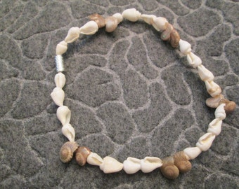 """Genuine SHELL Anklet>> 9"""" long>>beautiful white with tan"""