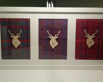 3 framed stag heads with Harris Tweed backgrounds.