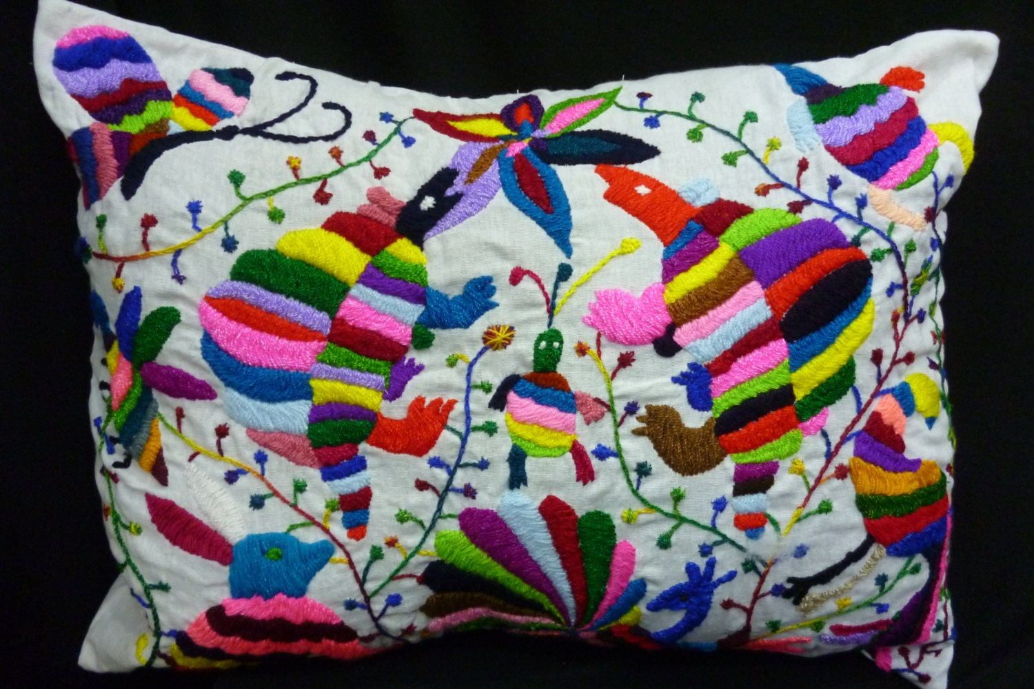 Mexican pillow case embroidered