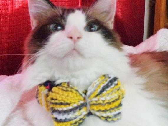 cat collar- hand knit- yellow/grey