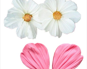 NEW 2 Piece Daisy Petals Silicone Mold for Fondant, Gum Paste, Chocolate or Cake Decoration