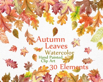 "Watercolor Leaves Clipart: ""AUTUMN LEAVES CLIPART"" Autumn Colors leaf clip art hand painted clipart Fall Leaf Autumn Decor instant download"