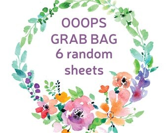 Ooops Grab Bag, Planner Stickers, Misfit Stickers, Grab Bag Stickers for Erin Condren Planner, Happy Planner Stickers, Mystery Stickers