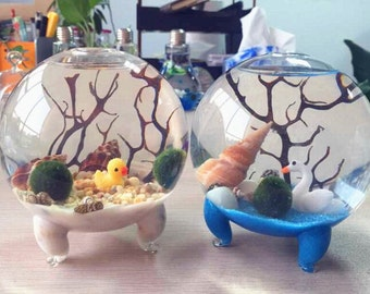 "Marimo Terrarium Kit for Green Gifts - 4"" footed aquarium terrarium/living Japanese moss ball,sand,stones,sea shells and sea fan"