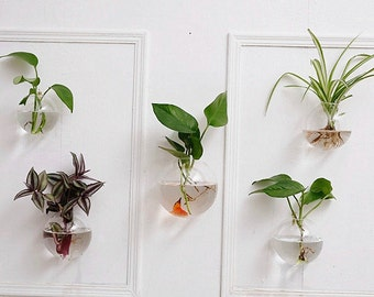 set of 5 bubble terrarium glass wall vase indoor wall mounted planters for air plants flowers