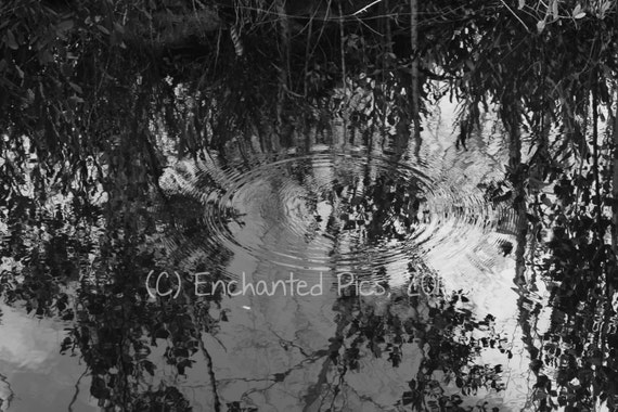 Lakeside Photography: Rippled Reflections- nature photography, trees, lake, reflection, water, shadows, shore, ripple
