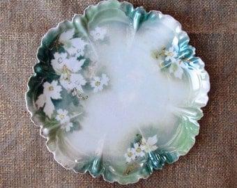 Vintage Hand Painted Plate, R. S. Prussia Porcelain, Art Nouveau Plate
