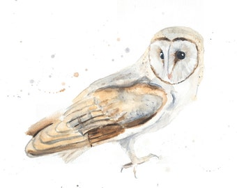 Barn Owl- Limited Edition Signed Print