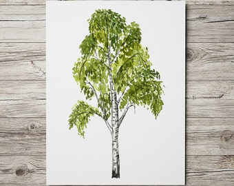 Birch tree print Birch art Watercolor poster Floral print ACW827