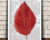 Fall leaf poster Autumn art Watercolor print Leaf print RTA1781