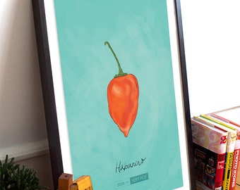Habanero Chili Pepper Kitchen Giclee Art Print Cotton Canvas And Paper  Canvas Mexican Rustic Chile Theme