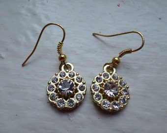 Sparkly Pendant Earrings