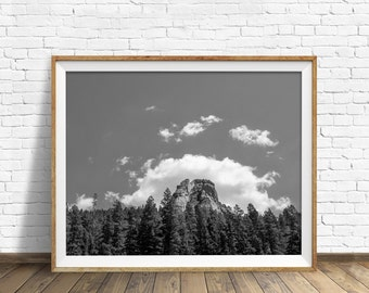 "nature photography, large art, printable art, instant download printable art, black and white, digital download, landscape, print - ""Halo"""