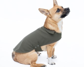 All Weather Lightweight Dog Coat in Moss Green