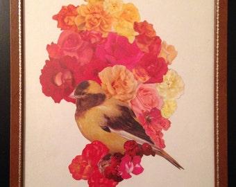 Bird // Flowers
