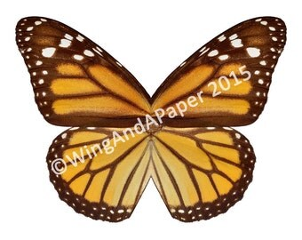 Monarch Butterfly Printable Costume Wings for Kids