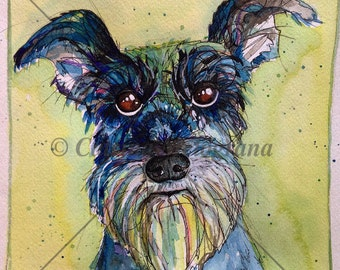 watercolor schnauzer dog