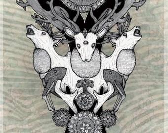 Cerdine / / Print illustration deer flowers