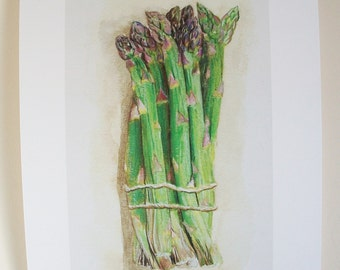 PRINT of original illustration ' Asparagus'